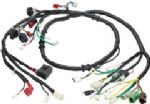 Motorcycle wire harness-2 two wheelers-3 three wheelers wiring harness